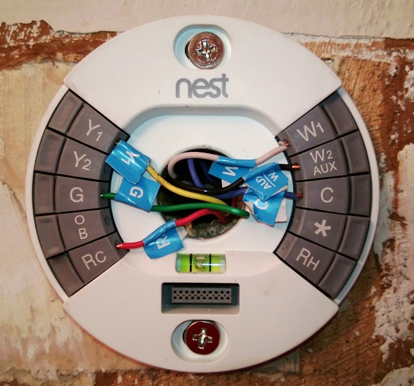 Fichier:Nest Base of version 2.jpg